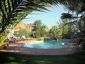 Pool Decks and Patios